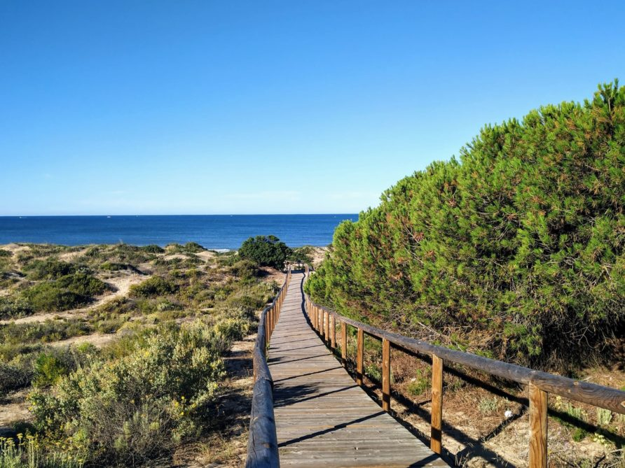Best day trip from Punta Umbría: El Portil